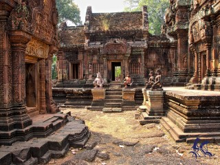 Angkor Wat - Angkor Thom - Ta Prohm  1 Day - Private tour
