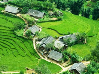Vietnam Discovery 14 Days Tour- Private tour - 28% off