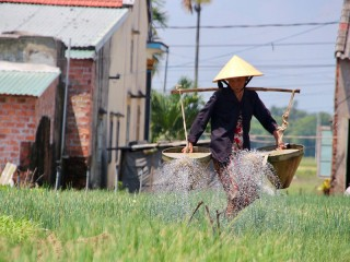 Highlights of Vietnam 7 Days Tour - Private tour - 30% off