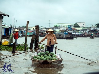 Mekong Delta 1 Day Tour - Private tour - 45% off