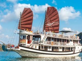 Swan Cruises - 40% off