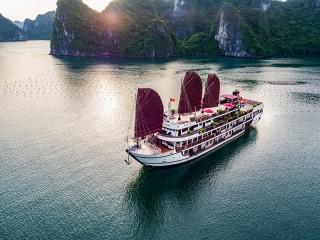 Alisa Premier Cruise - 30% off