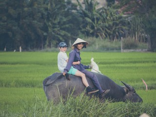 Vietnam Family Package Holiday 10 Days - Private tour - 30% off