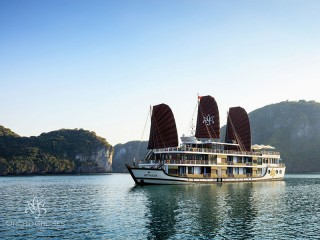 Orchid Cruises - 25% off