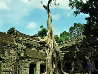 Discover Angkor Temples 5 Days - Private tour - 35% off