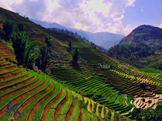Amazing North-West Vietnam 7 Days Tour - Private tour - 25% off